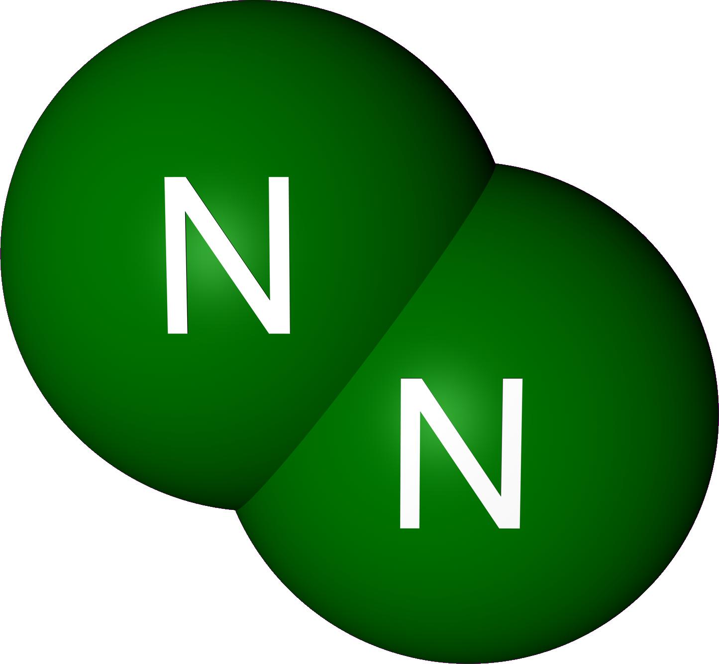20100805213607!NitrogenRencer